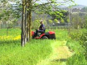 Test drive of the Snapper ERXT2242RDF