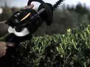 McCulloch Hedge Trimmers, fast cutting of the hedge