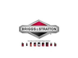 How to do the first start of the engine Briggs & Stratton 575EX series