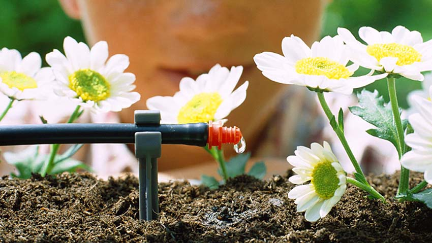 How to make an irrigation system for terraces and gardens