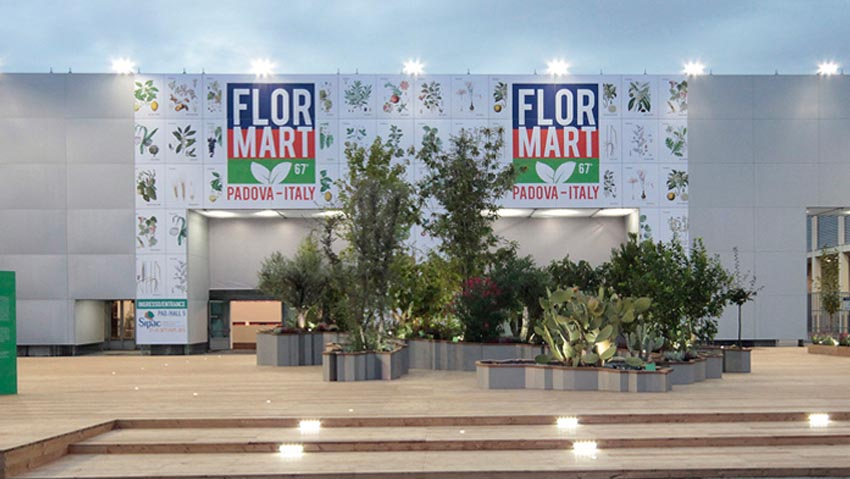 A Flormart a path in the nursery with Italian ship