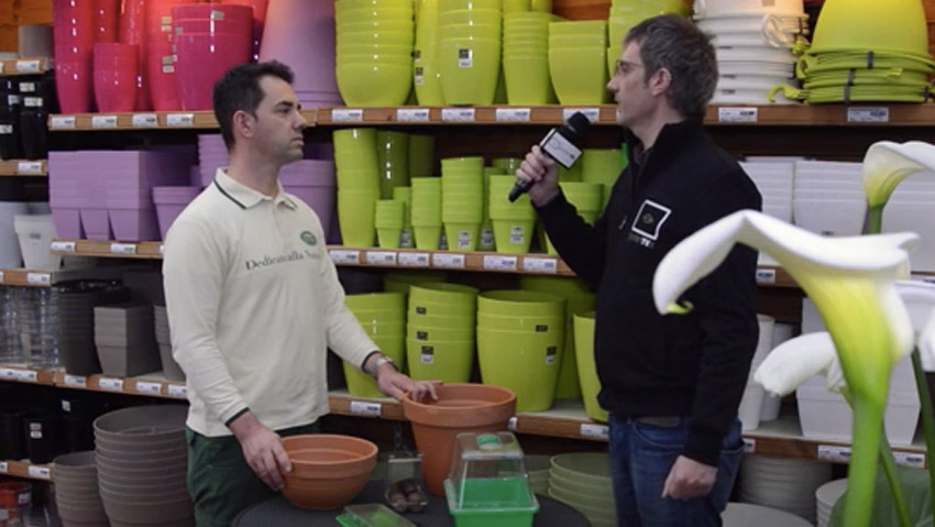 Which pot choose? The expert talks