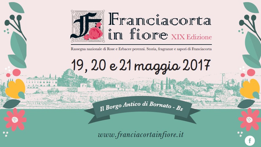 Franciacorta in bloom, focus on the landscape