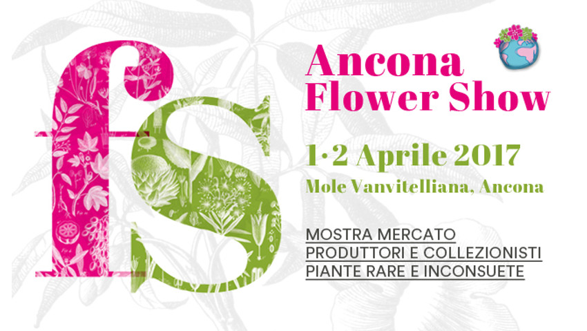 Ancona Flower Show, the news of 2017