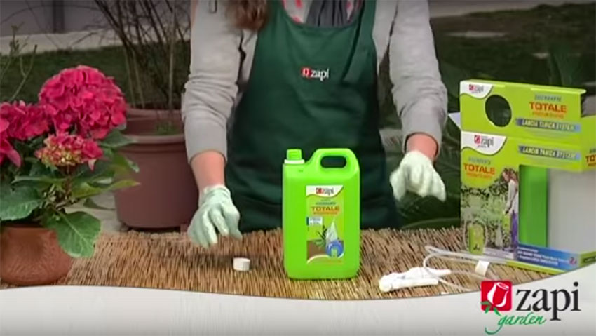 Combating weeds: the Zapi solutions