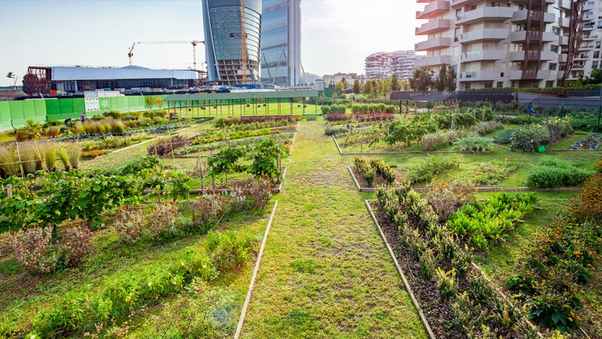 They double the flowering gardens of Milan Citylife