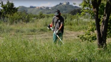 Life as a gardener. Training, equipment and criticality of the profession