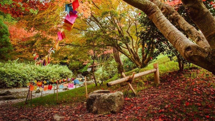 Foliage: all the events in the most beautiful Parks in Italy