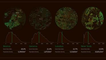 How green is the city? Treepedia says