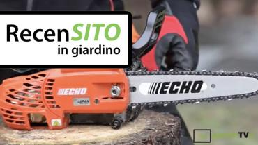 Test Echo professional pruning chainsaw