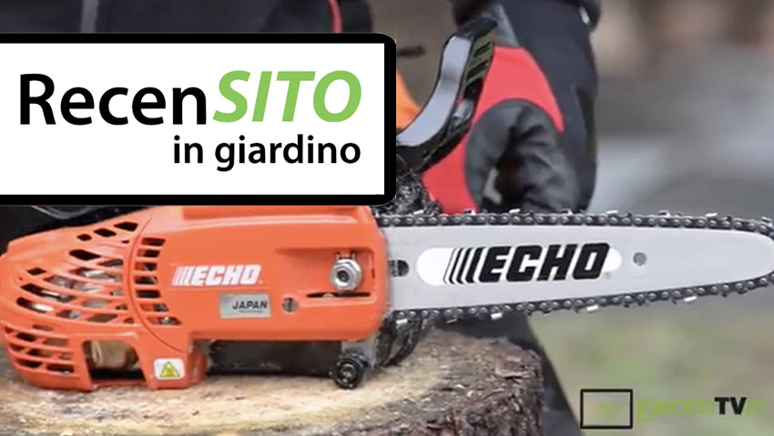 Try Echo professional pruning chainsaw