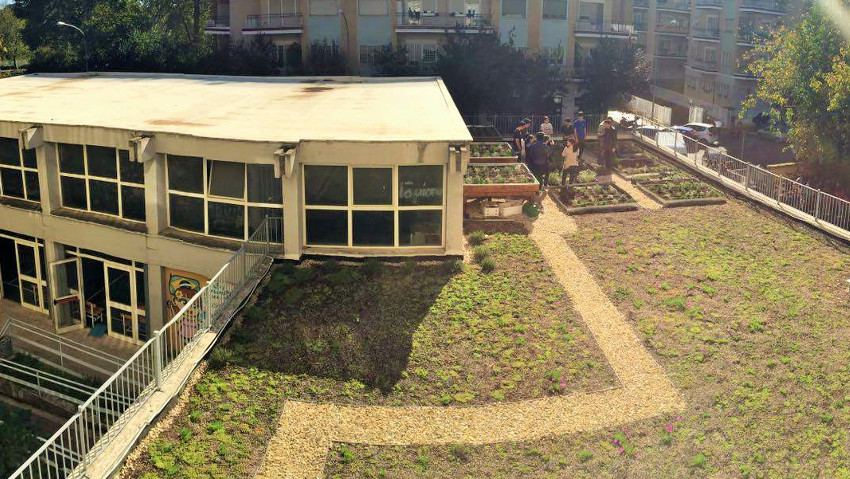 Hanging gardens: a lesson on the roof