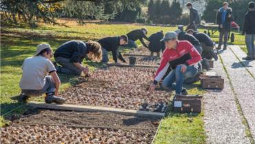 Resilient gardening: free course for unemployed young people