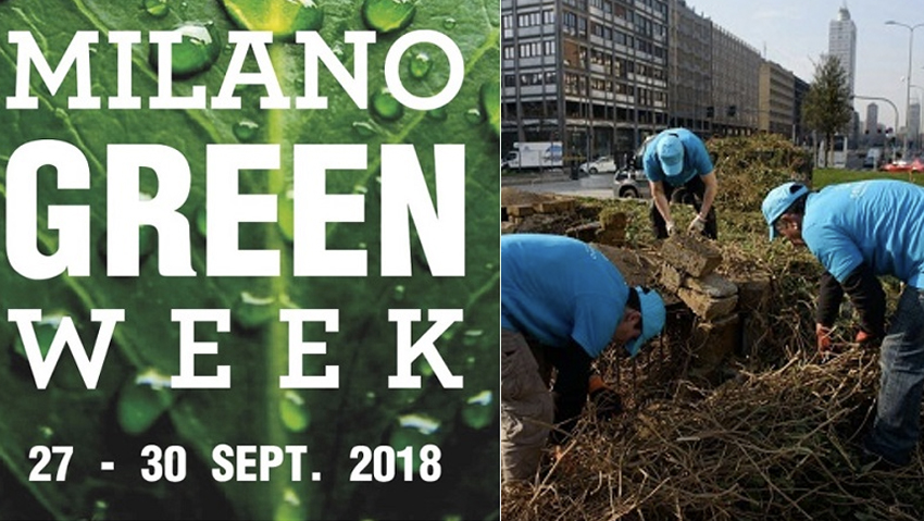 In Milan, 15 thousand trees are planted in five months
