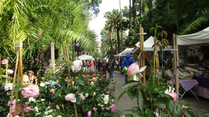 Show market of plants at the Botanical Garden of Naples