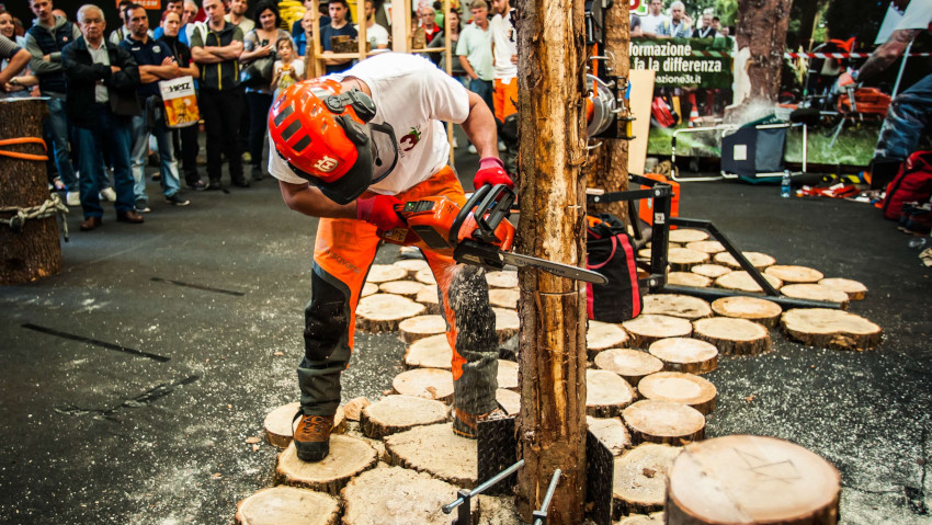 Arborshow, the first arboriculture exhibition