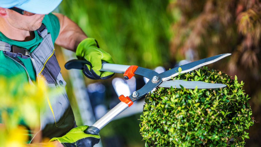 How to become a green maintainer
