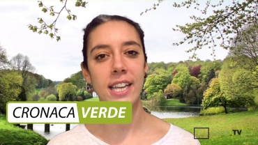 Cronaca Verde: watch the second episode