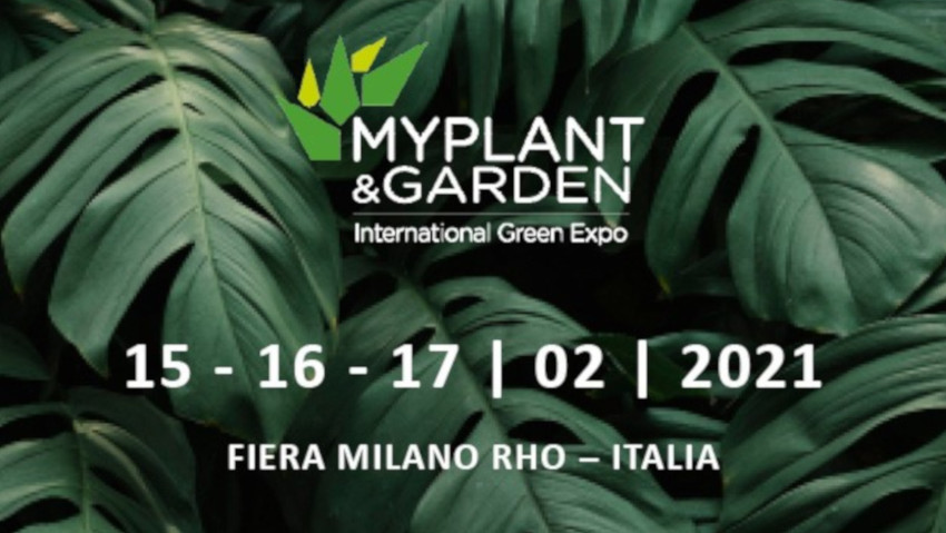 Myplant & Garden postponed to 2021
