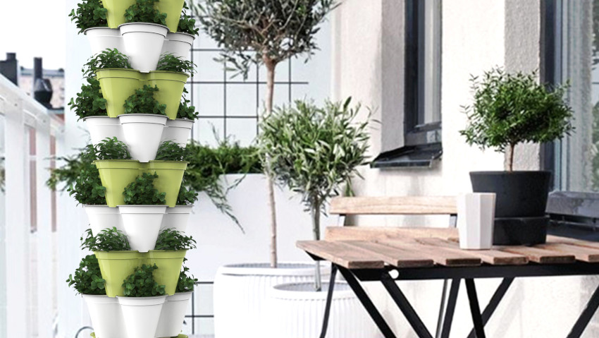 A vertical vegetable garden for the terrace and balcony