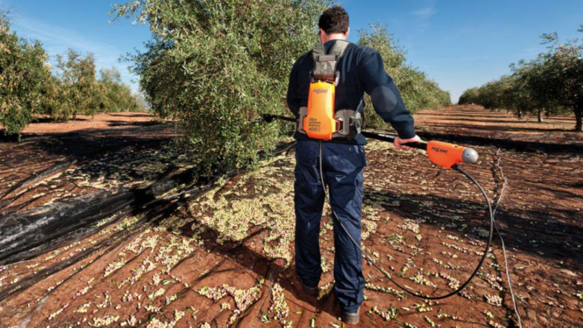 Battery-powered olive harvester for professional olive harvesting