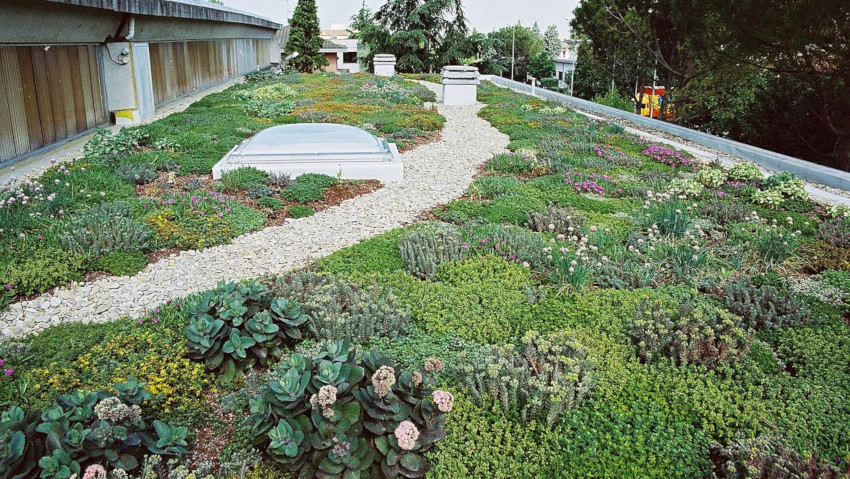 Vertical green roofs at Eima Digital Preview