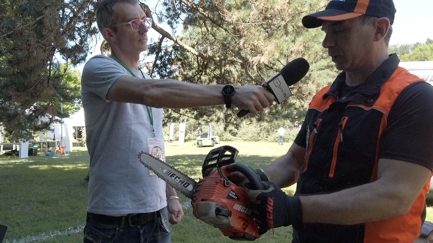 Battery-powered pruning chainsaw for arborists