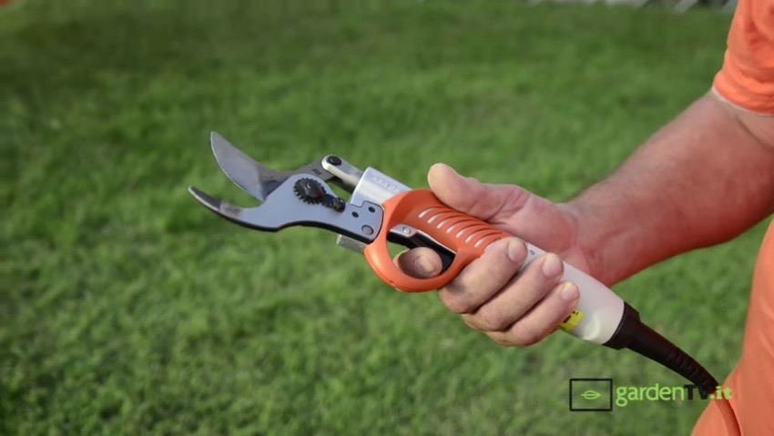 Stihl: electric scissors and other tools to Demogarden