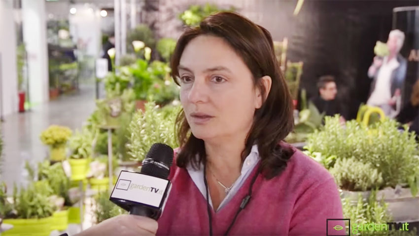 Green and trends: Interview with Director of Gardenia