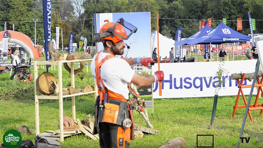 Training for pruning trees and use chainsaw with 3T