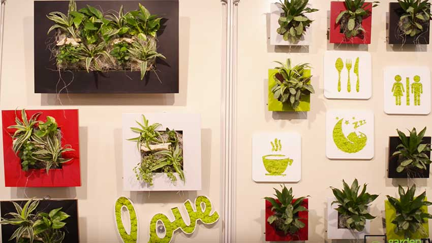 Vertical garden, floral paintings with flowers