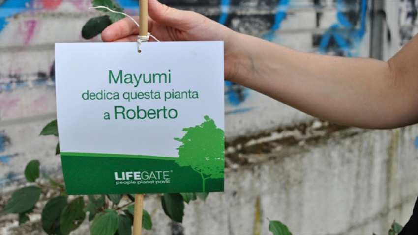 LifeGate, give a piece of forest