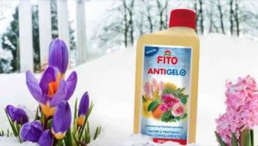 Frost Fito, the first antifreeze fertilizer