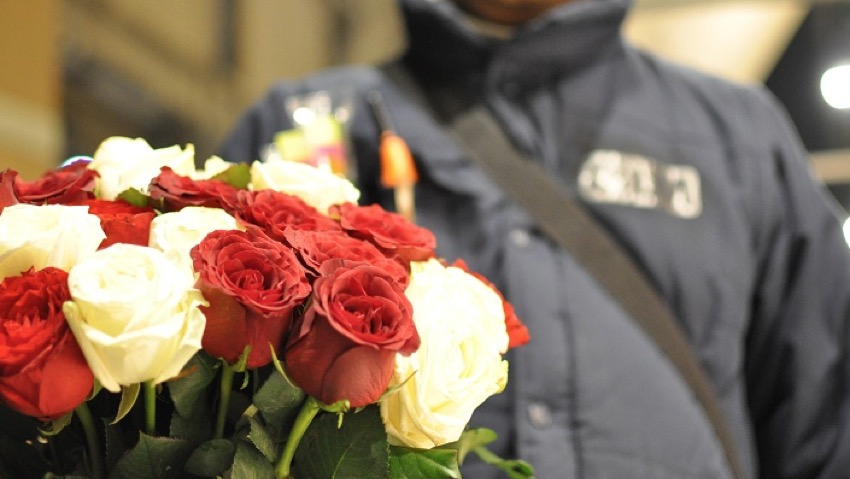 Rose seized given away to the nursing home