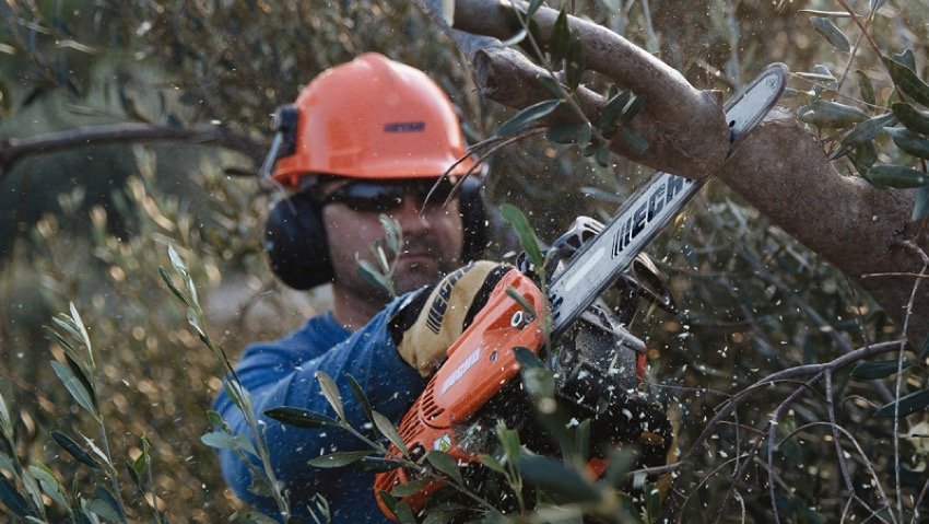 New lightweight chainsaws Echo and Shindaiwa